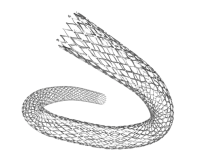 SE Peripheral Stents